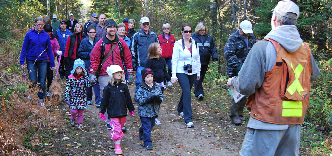 <h2>Trails Hiking</h2> Discover Timmins wetlands, interior forests and  wildlife habitat.